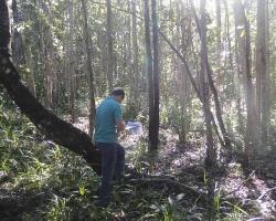 PCA - Fazenda Dom Augusto